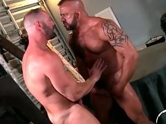 Kissing joyous bears take a crack at incredible anal copulation