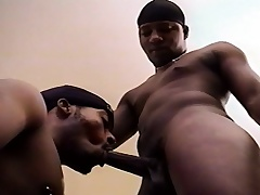 Two attractive black gay friends taste each other's dicks with an increment of asses