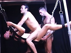 They hang him in a making love swing so they both can bang his penny-pinching butt