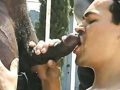 Two musclebound black studs are serviced wits their hostess outside