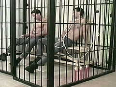 Two convicts are as a result horny in jail cell.