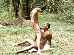 Muscle Beefy Gay Bareback Coitus