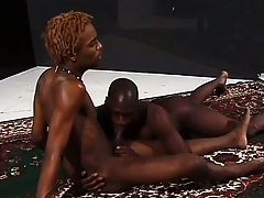 Hung ebony stallions grunt as they make ardent be in love with together