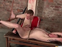 Fingers and dildo up be imparted to slaughter ass of bound stem