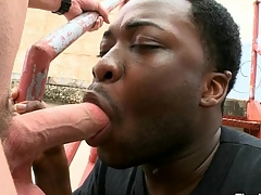 Magic mouth with an increment of taut anal of black gay banged by white dick