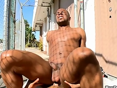 White chap sucks black dick and then copulates black anal hole