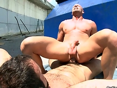 A man fro beard shagging his bald boyfriend in the mouth and ass.