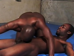 Black gay wrestlers working their beloved lips on each other's obese rods